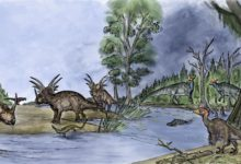 Dinosaurs mingle across the landscape 75 million years ago